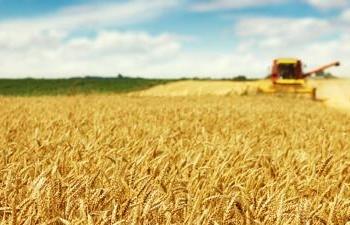 Corso Conduttore Impresa Agricola